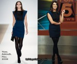In Ashley Greene's Closet - Yigal Azrouël & Nicole Miller