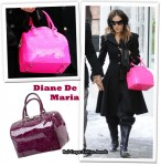 Sarah Jessica Parker Loves Her Diane De Maria 'Bonnie' Bag