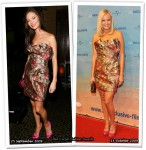 Who Wore Marchesa Better? Georgina Chapman or Malin Akerman