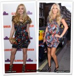 Who Wore Peter Pilotto Better? Amanda Seyfried or Petra Eccleston