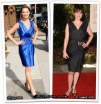 Who Wore Reem Acra Better? Katherine Heigl or Carla Gugino