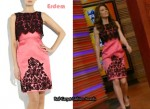 In Jessica Biel Closet - Erdem Hoshie Embroidered Silk-Organza Dress