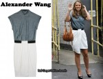 In Kimberley Walsh's Closet - Alexander Wang Oxford-Style Shirt Dress
