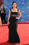 2010 Emmy Awards - Julia Louis-Dreyfus In Narciso Rodriguez