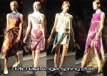 Michael Angel Spring 2011