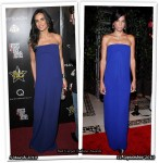 Who Wore Victoria Beckham Collection Better? Demi Moore or  Veronica Webb