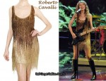 In Taylor Swift's Closet - Roberto Cavalli Beaded Fringed Dress