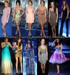 Who Was Your Best Dressed At The 2011 People's Choice Awards?