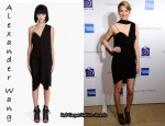 In Whitney Port's Closet - Alexander Wang Draped Dress