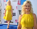 Amy Poehler In MaxMara - 2011 VH1 Do Something Awards