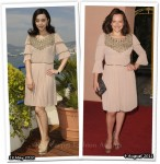 Who Wore Alberta Ferreti Better? Fan Bing Bing or Elisabeth Moss