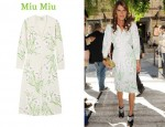 In Anna Dello Russo's Closet - Miu Miu Sable Embroidered Dress