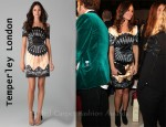 In Pippa Middleton's Closet - Temperley London Classic Fan Dress