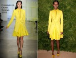 Liya Kebede In Cushnie et Ochs - 2011 CFDA Vogue/Fashion Fund Awards