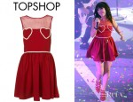 Carly Rae Jepsen's Topshop Heart Mesh Flippy Dress