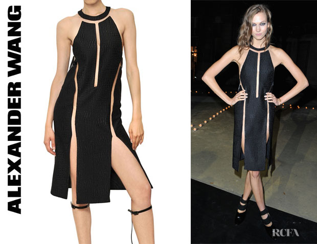 Karlie Kloss' Alexander Wang Cut Out Snake Printed Silk Dress