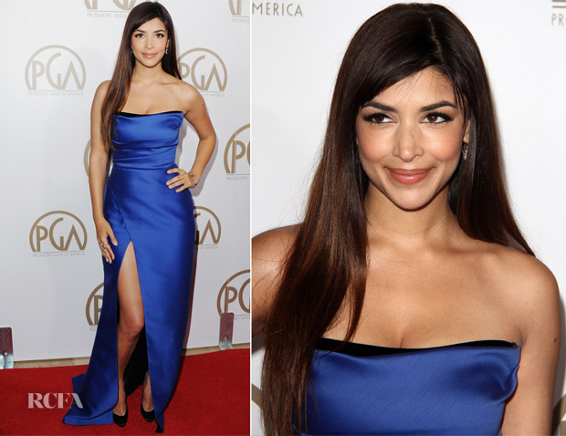 Hannah Simone In Rafeal Cennamo - 2013 Producers Guild Awards