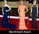 Fashion Critics' 2013 SAG Awards Round Up