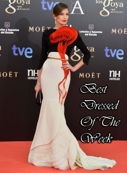 Goya Cinema Awards 2013 - Red Carpet