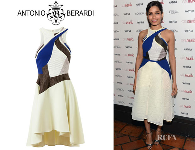 Freida Pinto's Antonio Berardi Patchwork Stretch Crepe And Mesh Dress