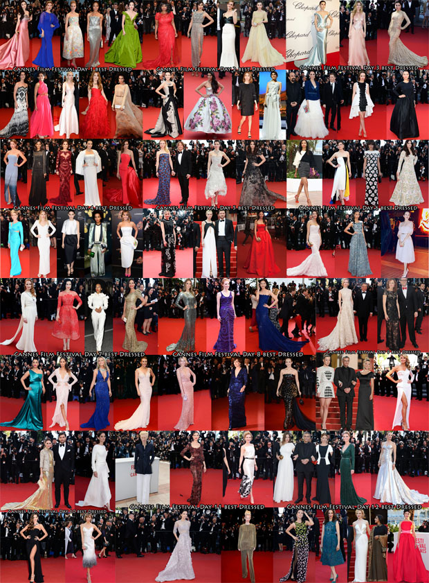 Cannes Best Of 2013