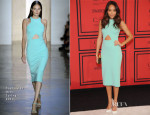 Ashley Madekwe In Cushnie Et Ochs - 2013 CFDA Fashion Awards