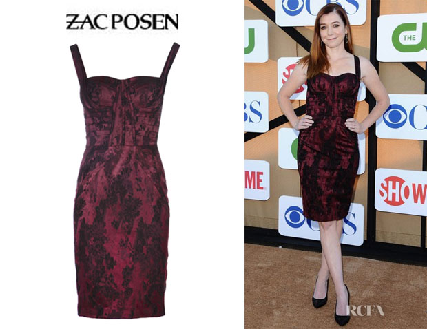 Alyson Hannigan's Zac Posen Drape Printed Cocktail Dress