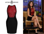 Selena Gomez' Antonio Berardi Velvet and Crocodile Textured Pencil Dress