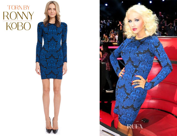 Christina Aguilera's Torn by Ronny Kobo 'Mammie' Dress