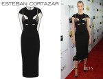 Karolina Kurkova's Esteban Cortazar Stretch Dress
