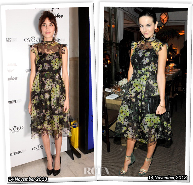 Who Wore Erdem Better Alexa Chung or Camilla Belle