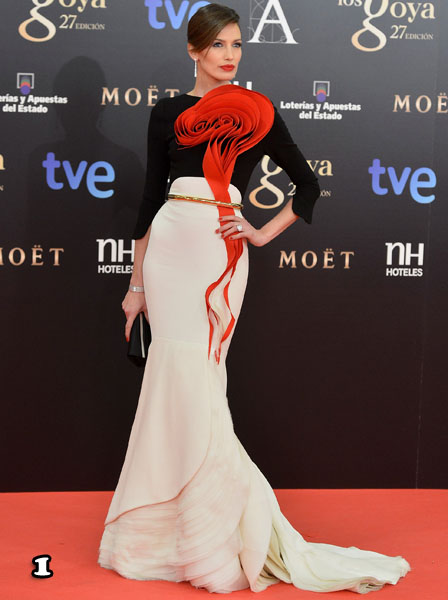 Goya Cinema Awards 2013 - Red Carpet
