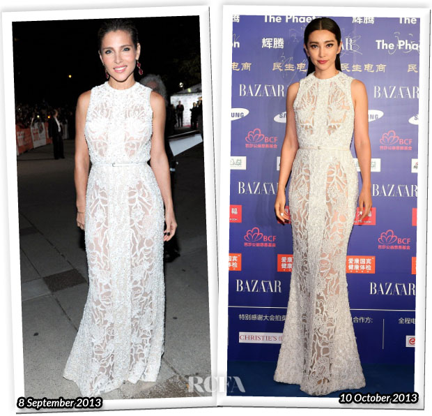 Who Wore Elie Saab Better Elsa Pataky or Li Bingbing