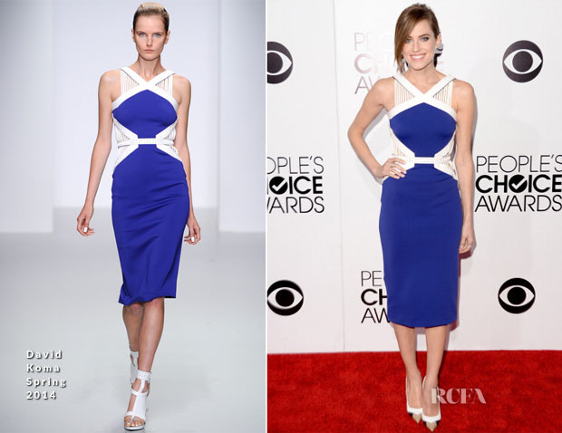 Allison Willams In David Koma - 2014 People's Choice Awards