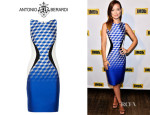 Olivia Wilde's Antonio Berardi Paneled Crepe And Jacquard Dress