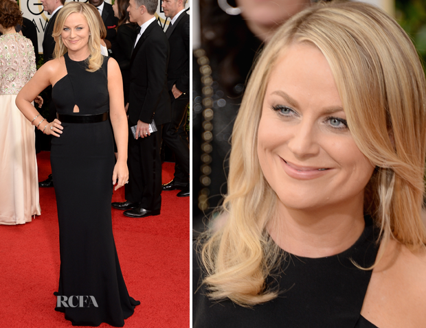 Amy Poehler In Stella McCartney – 2014 Golden Globe Awards