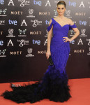 Norma Ruiz In Donna Karan Atelier - Goya Cinema Awards 2014