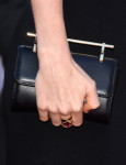 Taylor Swift's M2Malletier clutch