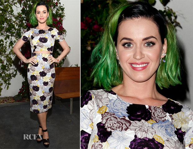 Katy Perry In Suno - Congressional Candidate Marianne Williamson Press Event