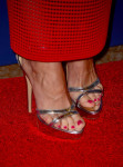 Sofia Vergara's shoes