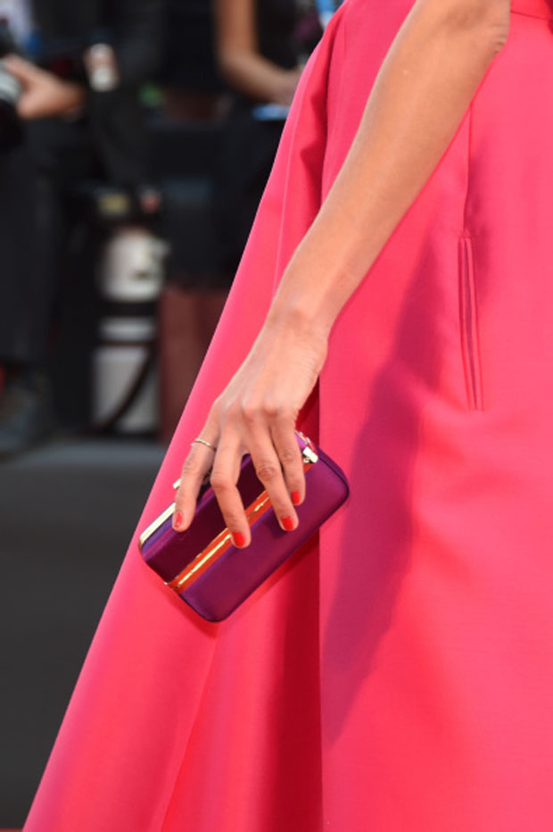 Nieves Alvarez' Salvatore Ferragamo clutch