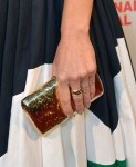 Hilary Swank's clutch