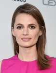 Stana Katic in Roksanda