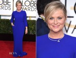 Amy Poehler In Stella McCartney - 2015 Golden Globe Awards