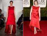 Lena Dunham In Zac Posen - 2015 Golden Globe Awards