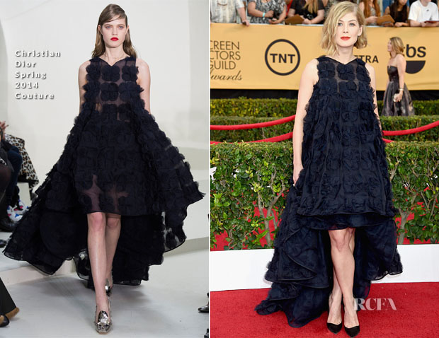 Rosamund Pike In Christian Dior Couture - 2015 SAG Awards
