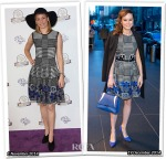 Who Wore Alexander McQueen Better...Elizabeth Banks or Brie Larson?