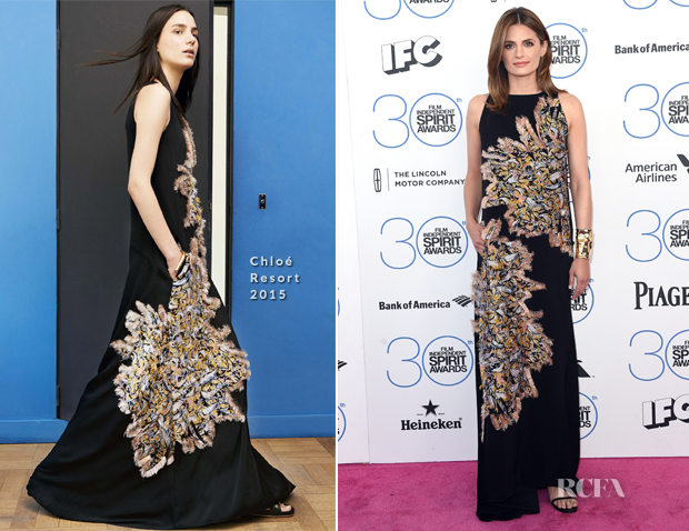 Stana Katic In Chloé - 2015 Film Independent Spirit Awards