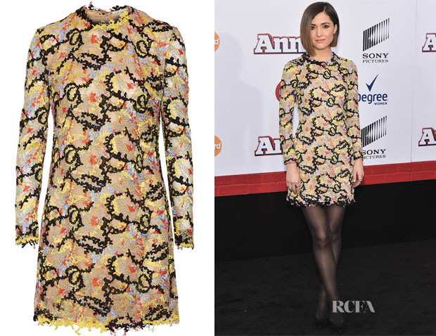 Rose Byrne's Mary Katrantzou  Embellished tulle mini dress