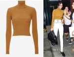 Kendall Jenner's  A.L.C. Milo Sweater